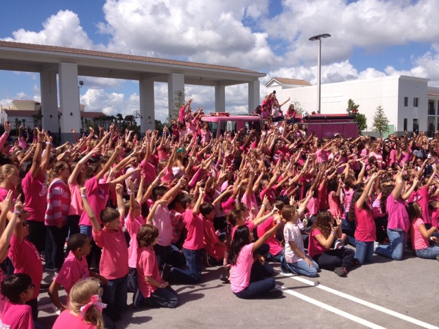 Pink Pumper Cancer Awarness